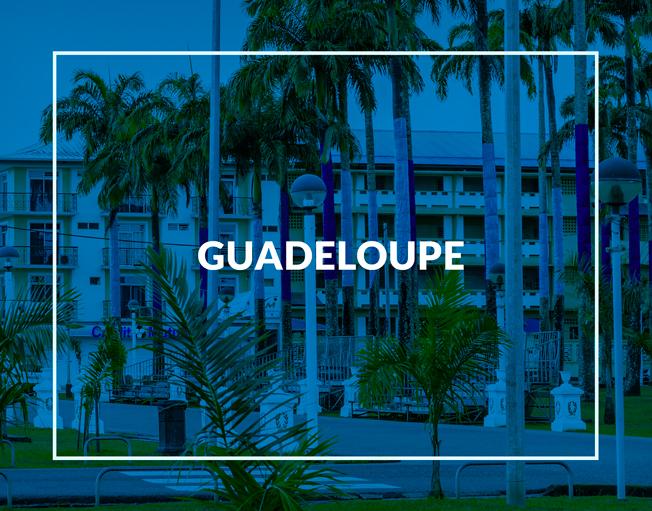 Découvrir le Forum Pro Jeunesse en Guadeloupe